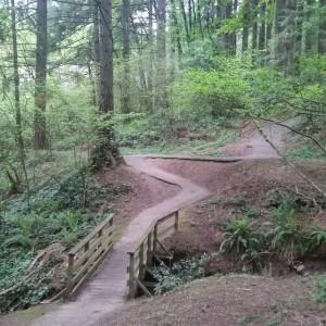 parrish troll bridge woods